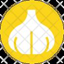 Allium Clove Garlic Icon