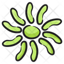 Allium Flower Blossom Flower Icon