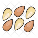 Almond Fruit Nuts Icon