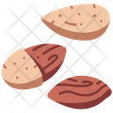 Nut Almond Healthy Icon