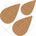Almond Nuts Dry Icon