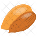 Almonds Dry Fruit Icon