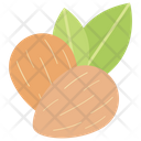 Almond Dried Fruit Healthy Food Icon