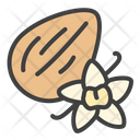 Almond Vanila Nuts Icon