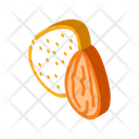 Almond Nut Icon