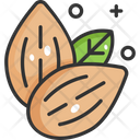 Almonds Vegetable Vegetarian Icon