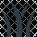 Aloe Vera Burn Icon