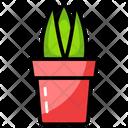 Aloe Vera Potted Plant Plant Icon
