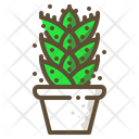 Aloe Vera Cactus Icon
