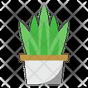 Aloe Vera Plant Nature Icon