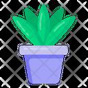 Indoor Plant Houseplant Decorative Plant Icon