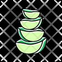 Aloe Vera Slices Icon