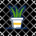 Natural Plant Aloevera Icon