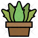 Plant Pot Aloe Icon