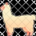 Alpaca Animal Pet Icon