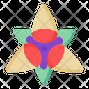 Alstroemeria Icon