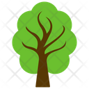 Elm Tree Forest Icon