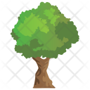 American Hornbeam Agriculture Icon