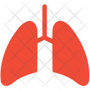 Anatomy Breathe Lungs Icon