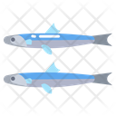 Anchovy Fish Seafood Icon