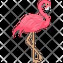Andean Flamingo Icon