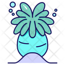 Anemone Icon