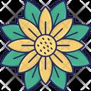 Anemone Anemone Flower Flower Icon