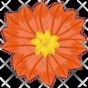 Anemone Flower Icon