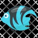 Angelfish Marble Fish Zebra Angelfish Icon