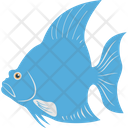 Angelfish Aquatic Mammal Fish Icon