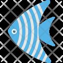 Angelfish Pet Fish Icon