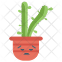 Angry Cactus Jade Plant Succulent Plant Icon