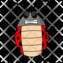 Angry Ladybug Icon