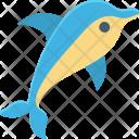 Animal Dolphin Fish Icon