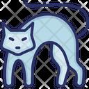 Animal Cat Evil Cat Icon