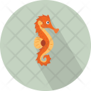 Animal Hippocampus Syngnathidae Icon
