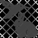 Animal And Bird Icon