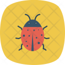 Animal Bug Insect Icon