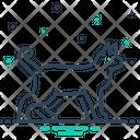 Animal Cattle Beast Icon