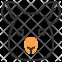 Animal Bear Face Icon