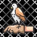 Animal training Icon
