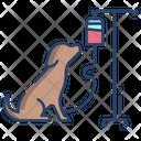 Animal Treatment Icon