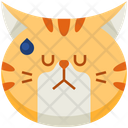 Annoyed Emoticon Cat Icon