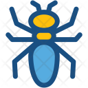 Ant Insect Pest Icon