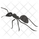 Ants Dorylus Insect Icon