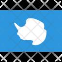 Antarctica Flag World Icon
