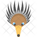 Brown Anteater Face Icon