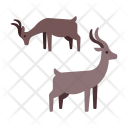 Antelope Deer Animal Icon