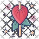 Blossom Anthurium Flower Bloom Icon