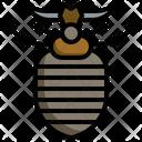 Antlion Zoology Antlion Icon